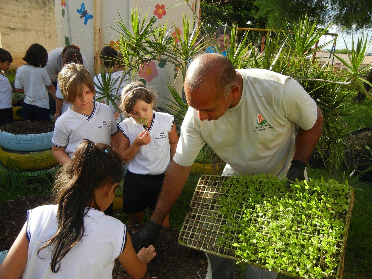 Cidades sem Fome - School garden