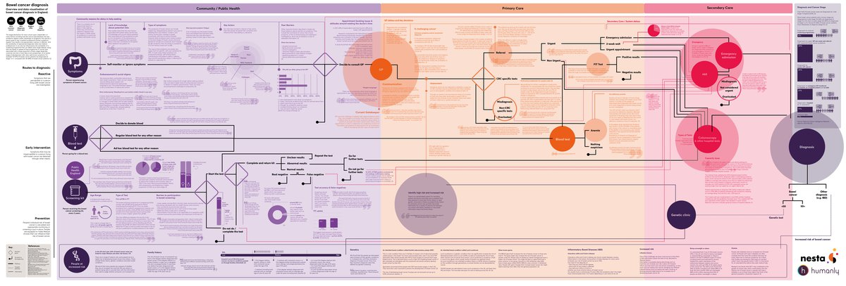 Bowel Cancer Diagnosis Visual Map