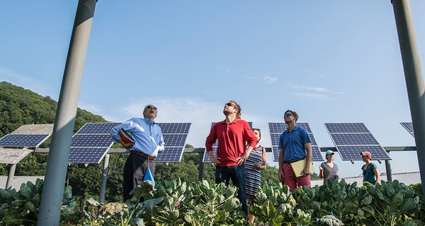 Solar panel community energy