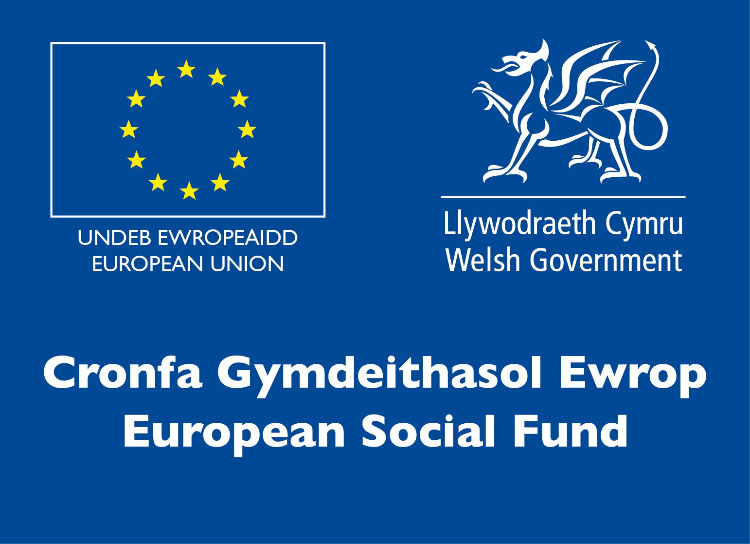 European Social Fund through Welsh Government