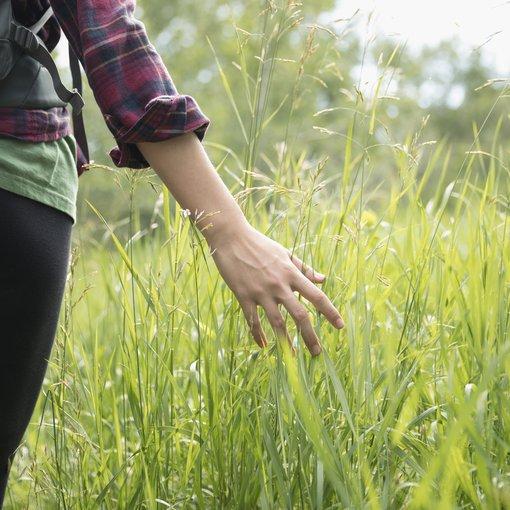 Woman walks through grass