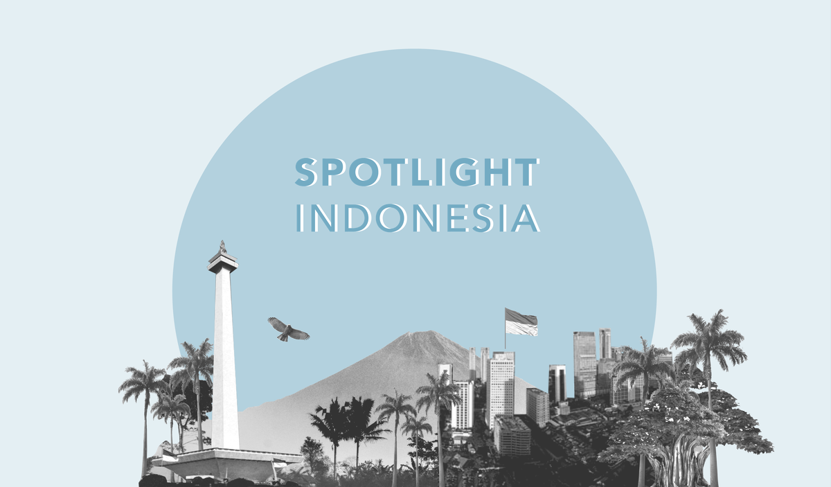 Indonesia Scoping Blog PNG hi-res (300dpi)2.png
