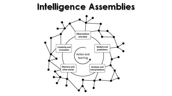 Intelligence Assemblies