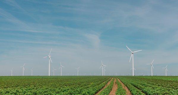 Wind turbines on open green field.jpg