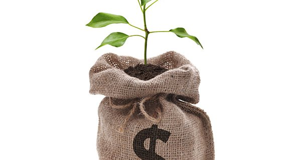 economy-_tree_growing_from_money_blog.jpg