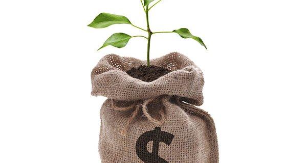 economy-_tree_growing_from_money_blog.jpg