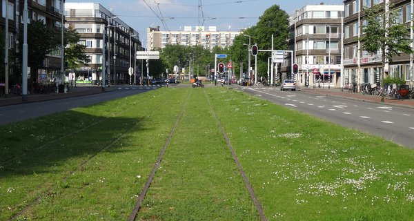grass-covered_tram_rail_tracks_-_stadhoudersweg_-_rotterdam_-_view_towards_the_east.jpg