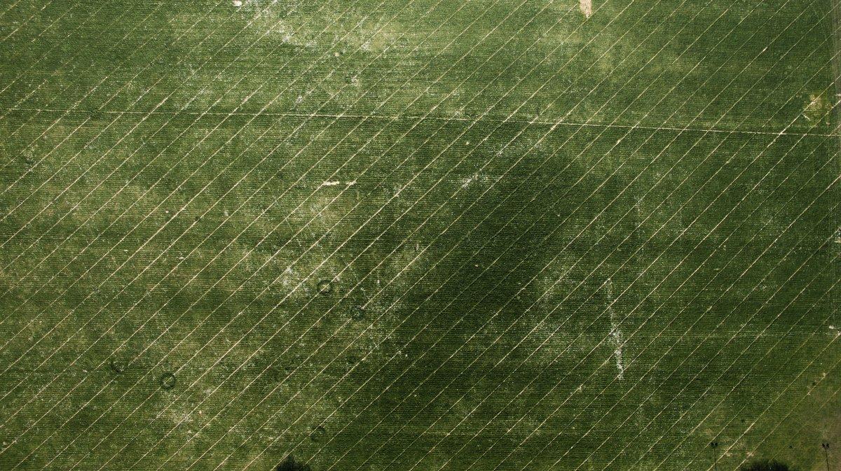 Geometric green patter