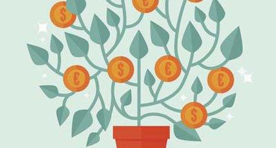 money-tree-rf.jpg