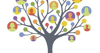 network-tree-rf_0.jpg