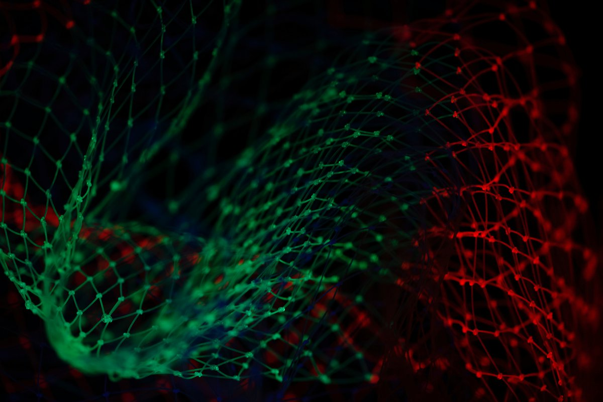 Red and green net