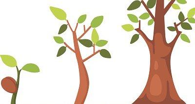 scaling-trees-rf.jpg