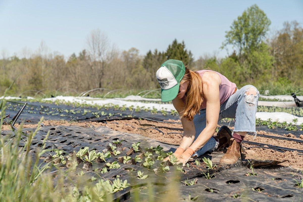 Woman plants crops